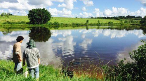 農場内には池もある